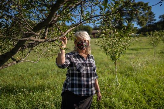 Cheryl Kobernik of North Star Organics in Frankfort poses for a photo amongst tart cherry trees at her farm in Frankfort on Friday, September 4, 2020.
