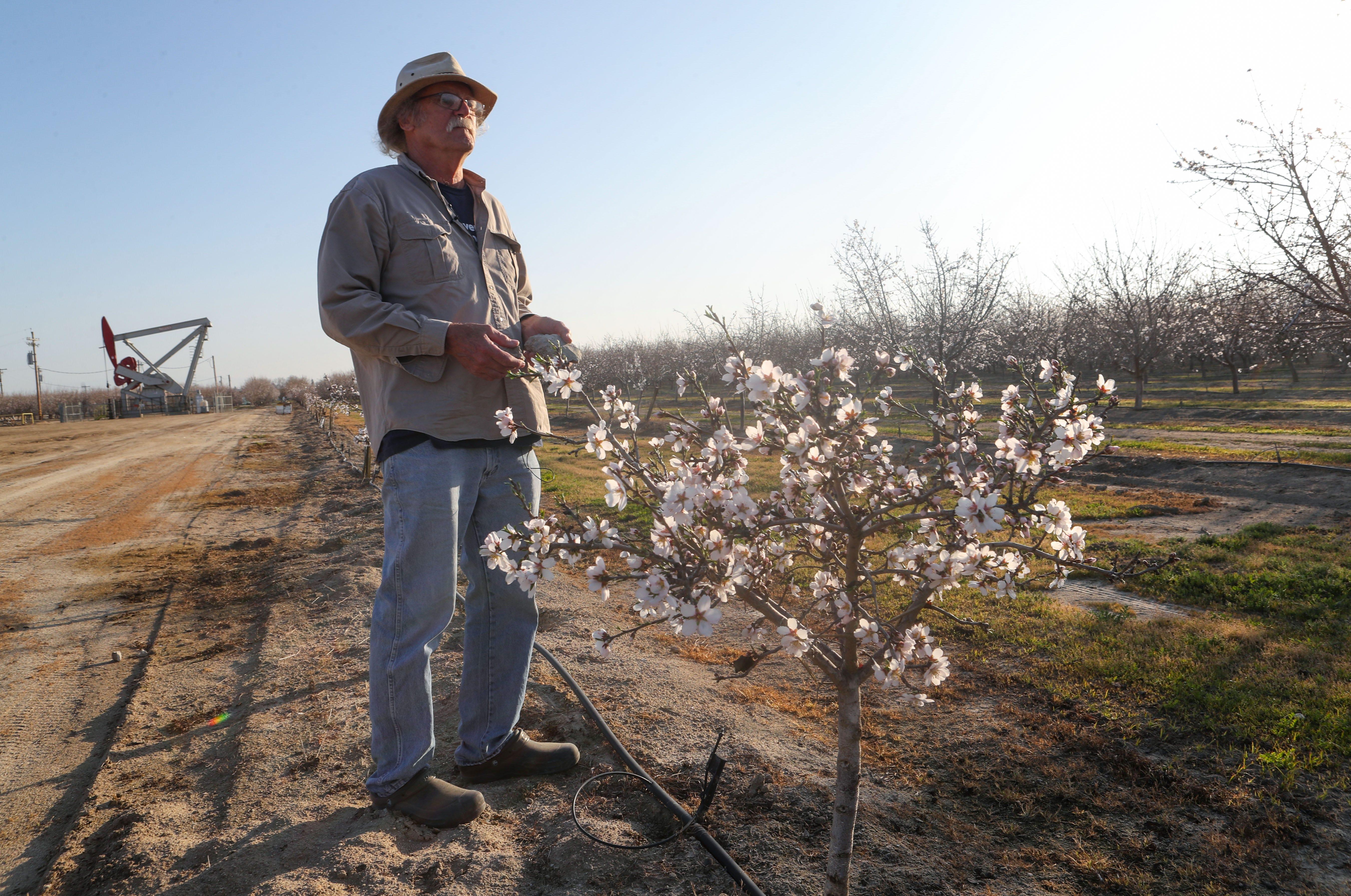 Fourth-generation farmer Tom Frantz says oil waste has stunted a neighbor's almond trees.