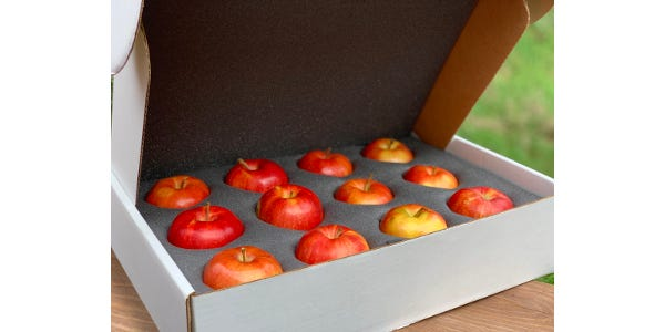 It's your chance to try those unique Wisconsin apples that never make it to the grocery store inside this sampler box.