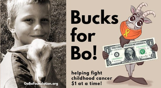 "Bo Johnson, left, was a 12-year-old Door County boy who died of a rare and aggressive form of leukemia in 2012. Before his passing, Bo came up with the idea that became the Go Bo! Foundation to raise funds for childhood cancer research and the families affected by it. ""Bucks for Bo!"" is a new campaign launched by the foundation."