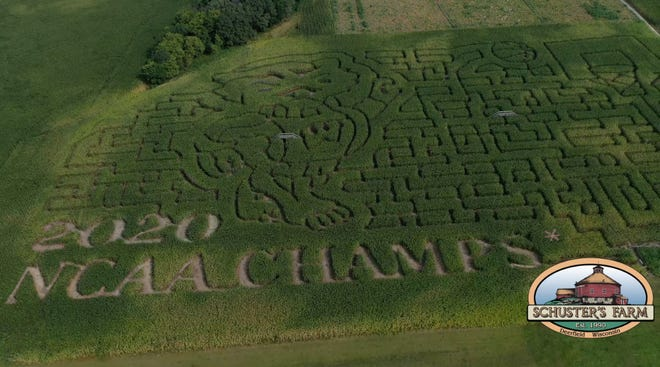 A corn maze at Schuster's Farm in Deerfield playfully declares the Badgers the 2020 national champs.