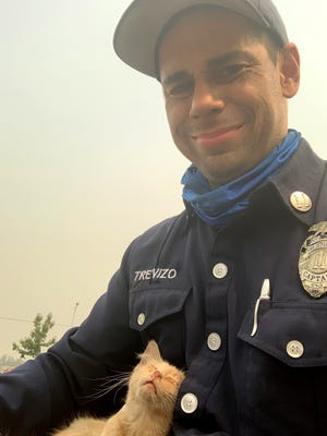 Daniel Trevizo, a fire captain with the Los Angeles County Fire Department assigned to the North Complex, saved this scared kitten who survived the Bear Fire.