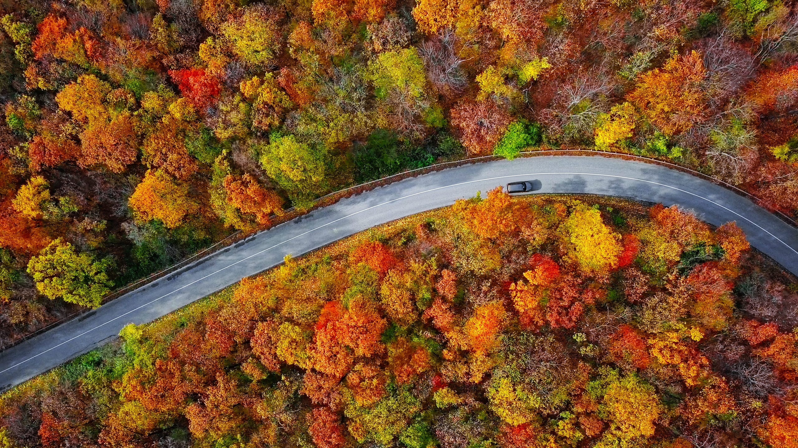 Fall leaves: Best places to enjoy foliage, according to readers