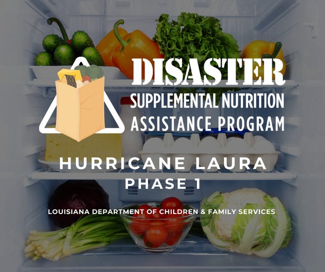 More information available on http://www.dcfs.louisiana.gov/DSNAPSchedule.
