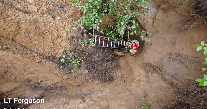 Alachua County Fire Rescue crews work to rescue a golden retriever, Sammy, who fell into a sinkhole Monday morning. [Alachua County Fire Rescue]