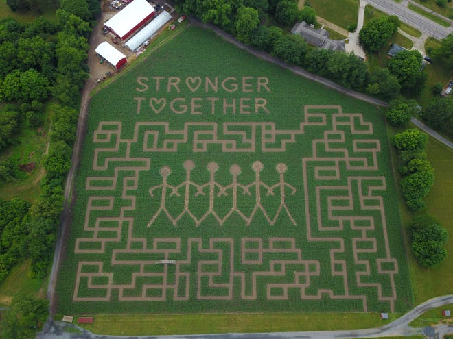 "An aerial view of the ""Stronger Together"" corn maze at Gull Meadow Farms in Richland."