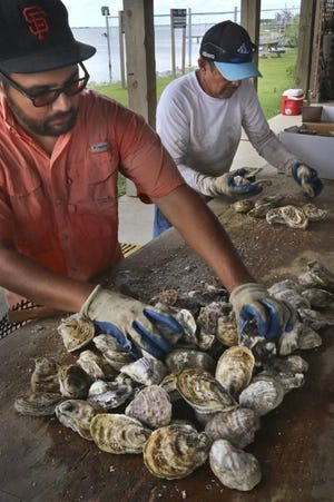 Boris Guerrero (left) and his father Marcos Guerrero prepare a shipment of oysters cage-grown in the waters off Grand Isle.