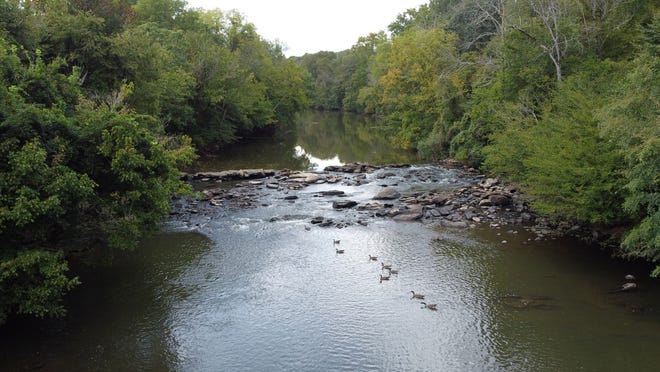 Pictured is the spot just off the Deep River Nature Trail  where book authors Hal and Eleanor Pugh believe Naomi Wise was murdered by Jonathan Lewis in the 1800s.