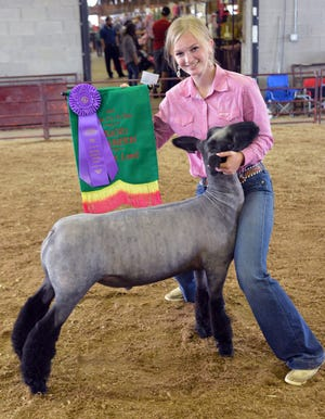 Kendra Marty had the Grand Champion Market Lamb, a champion Wayne County Breed Born and Raised Lamb and won Showmanship for 16 year olds.