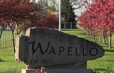 Wapello city sign