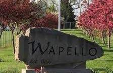Wapello city sign.