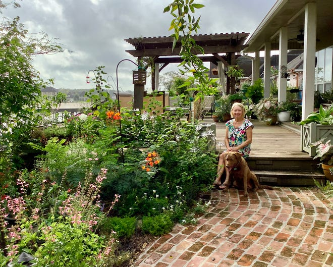 Member Mary Jo Pohlig sits with her Chesapeake Bay Retriever, Sophie, on the deck steps that lead down into her sunny pollinator garden. The blooms are pink salvia, white trailing verbena, orange pride of Barbados and white cat's whiskers. The porch shade protects her caladiums, succulents and ferns.