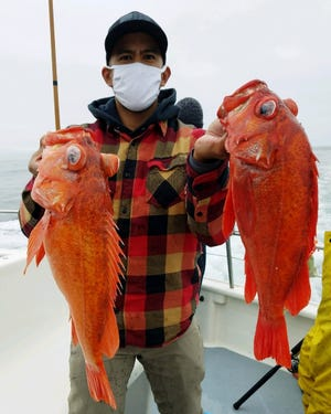 Big vermillion rockfish like these two are the reward for anglers fishing off the Monterey County Coast.