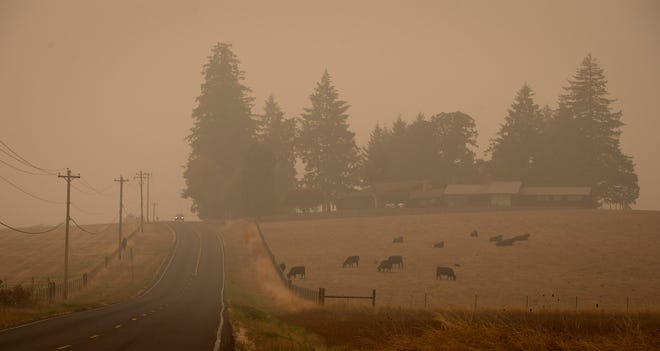 A vehicle travels north on the Dillard Access Road near Goshen on Tuesday morning. The air quality in the Willamette Valley continues to register in the hazardous range for a second week as smoke from wildfires linger.