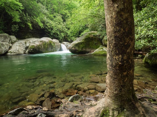 Great Smokies rangers and Haywood County first responders are searching for a 25-year-old man who went missing in Midnight Hole, seen here, in the Big Creek area on the North Carolina side of the park