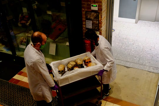 In this image taken in July 2020 and made available by Pitt Rivers Museum, a case of Human Remains are taken into storage at the Pitt Rivers Museum, part of the University of Oxford, Oxford, England.