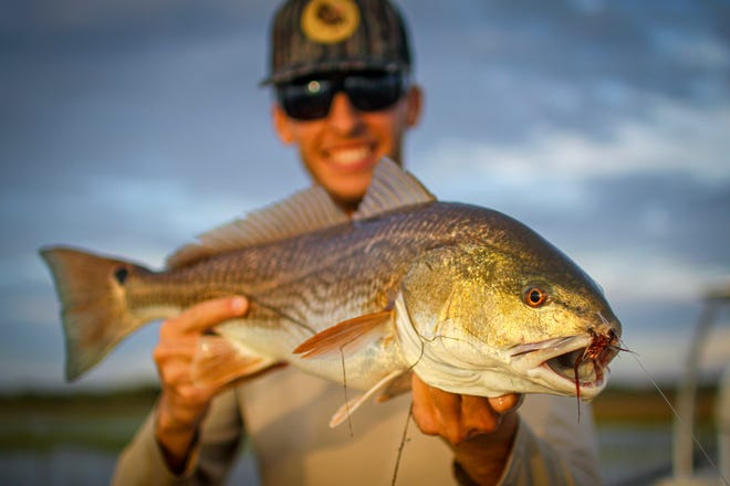 There's plenty of hungry redfish in the spartina grass when the flood tides, like this one caught by Steven Johnson.