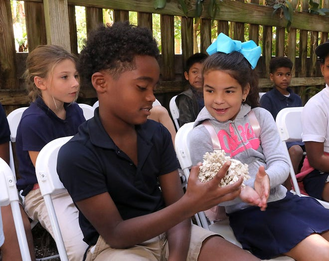 North Grade elementary school students Brandon Brown and Veronica Roche get to hold a coral skeleton in the Coral Reef interactive station operated by Palm Beach Day Academy students during Ann Norton's Earth Day celebration in April 2019. The PBDA students have joined a world-wide emergency rescue effort to save the Earth's coral reefs. [Damon Higgins/palmbeachdailynews.com]