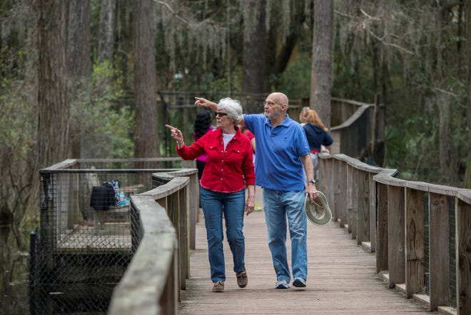 The Museum is set amidst 52 acres of breathtaking Florida flora and fauna.