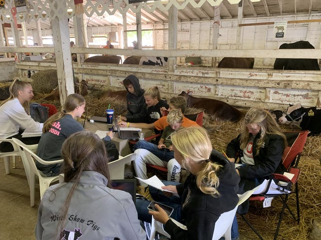Friends from Waynedale High School spent their final day at the Wayne County Fair doing homework in the back of the Coliseum among the cows. Sydney Raber (dark gray shirt) said she had a lot of fun this year, spending more time with her friends.