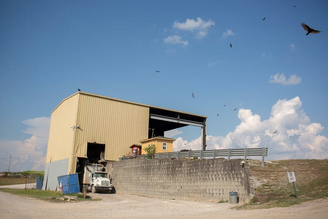 Vultures fly above the Maury County Solid Waste Department's transfer station on Lawson White Drive in Columbia, Tenn., on Friday, Aug. 14, 2020.