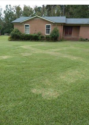 Richlands family finds a swastika mowed into their front yard sometime between Tuesday night and Wednesday morning.