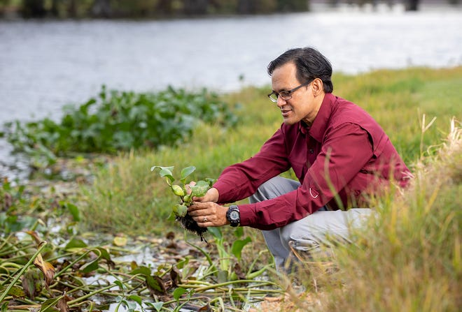 ULM Professor Joydeep Bhattacharjee, Ph.D., received an EPA-Environmental Education Grant, which includes working with local high school teachers and students.