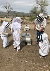 A Mason Valley beekeeper shows the Roots children — from left, Levi, 6, Easton, 9, and Audrey, 2  — how to safely handle bees and harvest wax. The children formed We 3 Kids Candles during quarantine and donate a percentage of the profits to local literacy programs.