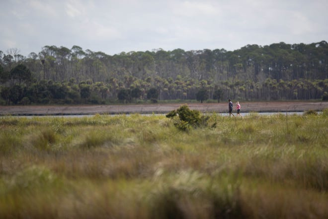 Scenes from St. Marks National Wildlife Refuge Sunday, Sept. 13, 2020.