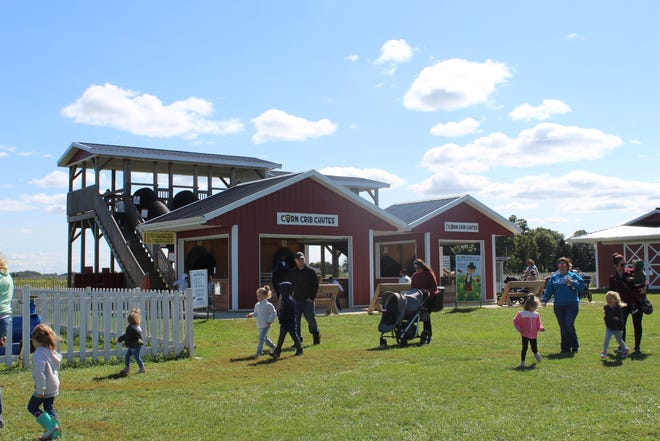 Ramseyer Farm in Wooster is open September through October for its Sunflower Days and fall activities.