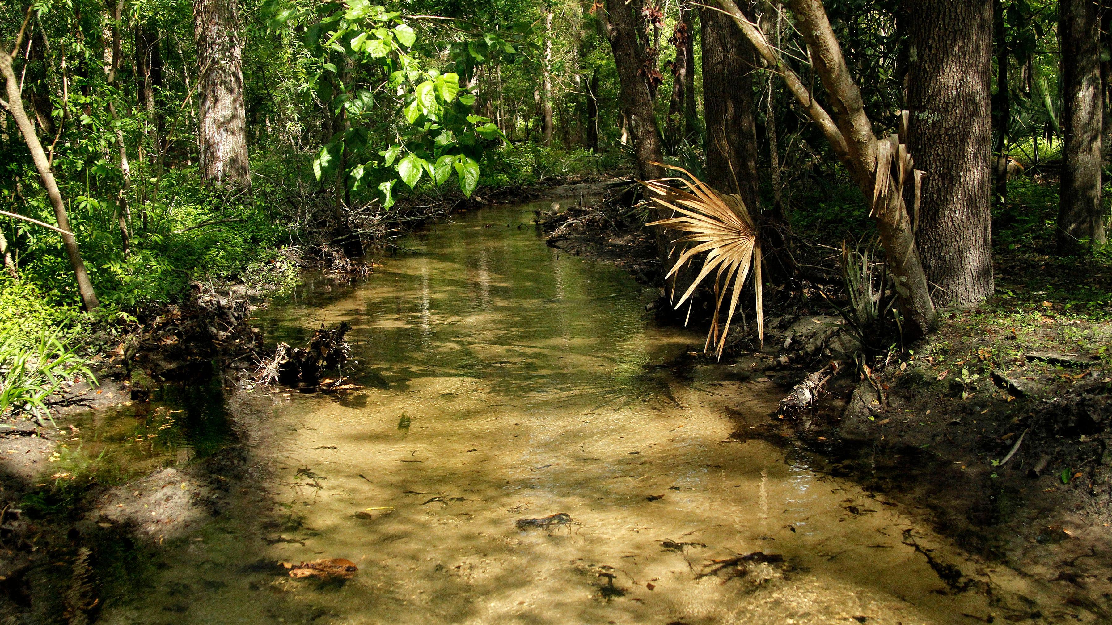 City CRC proposals involve GRU, Hogtown Creek trails