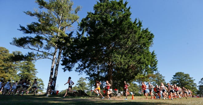 Runners compete in the 10,000 meter race at the NCAA South Regional Cross Country meet hosted by the University of Alabama at the Harry Pritchett Running Course Friday, November 10, 2017. [Staff Photo/Gary Cosby Jr.]