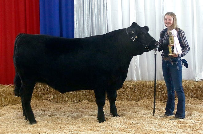 Frankie Dinsmore had the reserve grand champion in the Junior Fair Baby Beef show on Sunday.