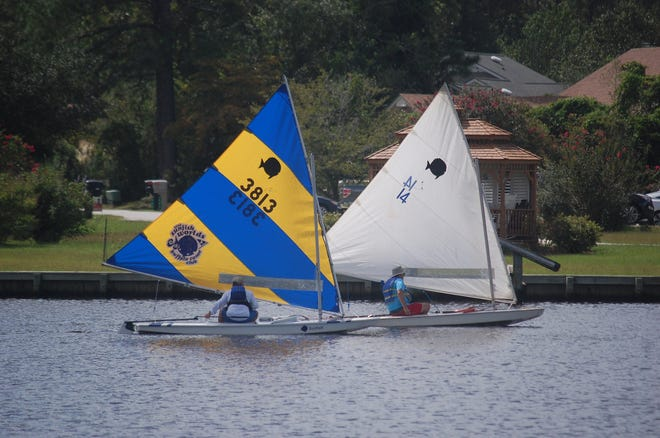 Sunfish racing resumed on October, moving to the Inner Harbour for the first time. Photo courtesy of Georgie Jackson.