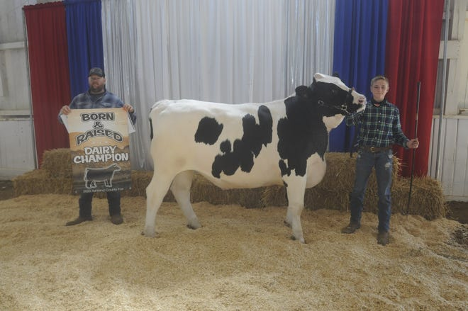 Kolton Eichelberger had the grand champion Dairy Market Steer on Sunday at the Ashland County Fair.