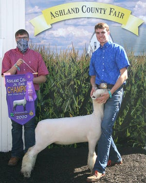 Clay Schoen won Grand Champion, Ewe Over All Breeds, in the Junior Fair Breeding Sheep show in the Green Merchant Building at the Ashland County Fair on Sunday.