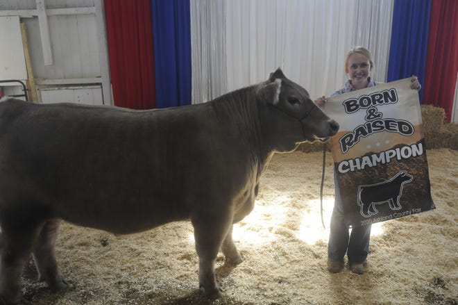 Destiny LaFever had the grand champion Born and Raised Market Steer on Sunday at the Ashland County Fair.