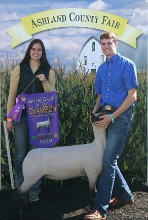 Clay Schoen won Grand Champion, Commercial Ewe, in the Junior Fair Breeding Sheep show in the Green Merchant Building at the Ashland County Fair on Sunday.
