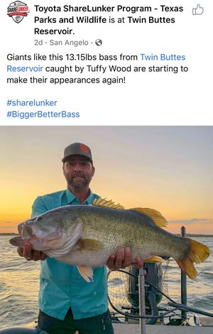 Tuffy Wood of Mertzon bagged a trophy bass Friday, Sept. 18, landing his name on the Texas Parks and Wildlife ShareLunker list, according to a Facebook post.