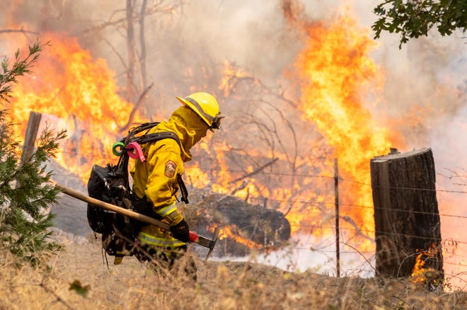 A local crew from CALFIRE fires off fuels near the SQF  Complex Fire along Bear Mountain Road on Sunday, September 20, 2020.