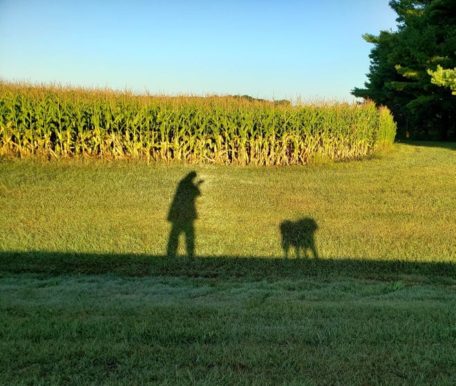 The rising sun casts shadows of Susan Manzke and her dog Sunny as they near the spot where a bear was sighted crossing the road near her home.