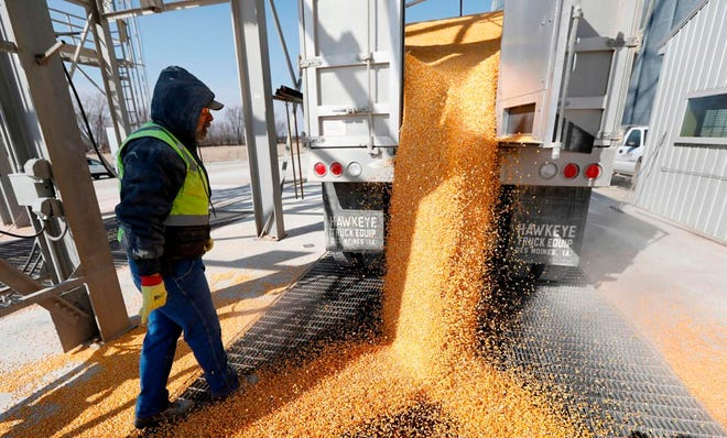 Despite weather challenges and a pandemic, corn growers turn in impressive yields in annual national contest.