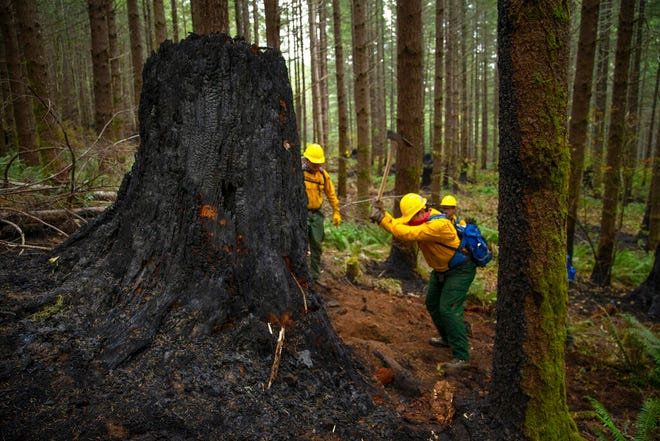 A fire crew from the Oregon Air National Guard works to dig out hot spots on the fire lines of the Holiday Farm Fire, east of Springfield, Ore., Monday.