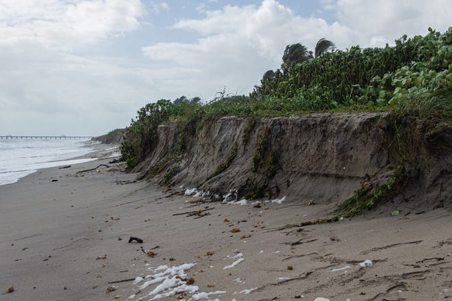 In this September 2020 photo, some sections of Juno Beach near Beach Access 31 eroded because of strong easterly winds off the coast.