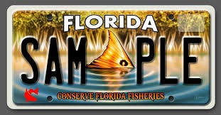 Specialty license plate sponsored by CCA/Florida.