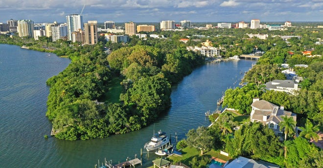 A view overlooking Marie Selby Botanical Gardens and Sarasota's skyline.
