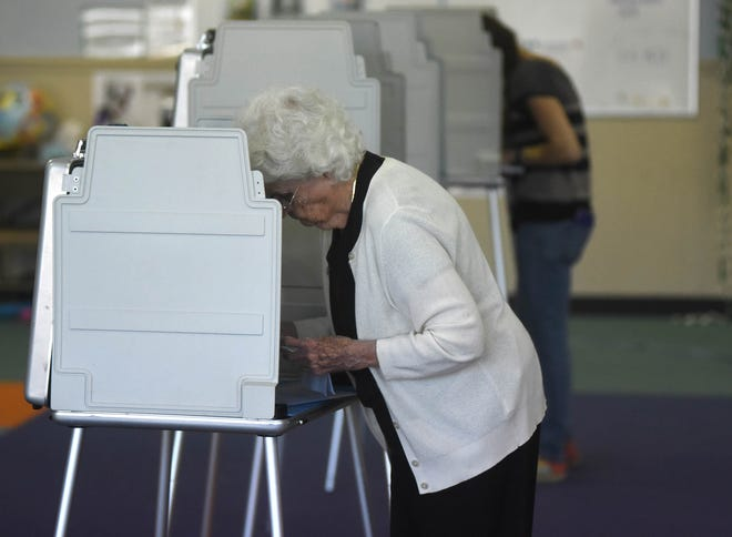 People cast their ballots in the voting booths at Forest Hills Elementary School in Wilmington, N.C. Tuesday, November 6, 2018.