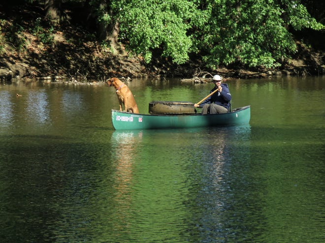 Ian Lehner of Columbus and his faithful companion, Sai, look for trash on the Mohican River near Greer during the Sept. 19 cleanup. They're affiliated with Paddle for Heroes.