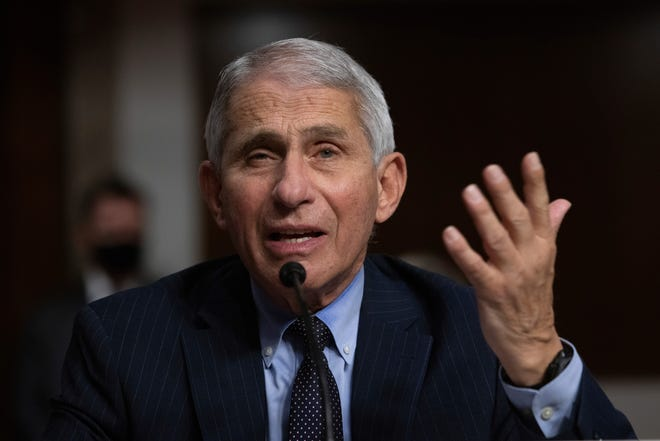 Dr. Anthony Fauci, director of the National Institute of Allergy and Infectious Diseases at the National Institutes of Health, listens during a Senate Senate Health, Education, Labor, and Pensions Committee Hearing on the federal government response to COVID-19 Capitol Hill on Wednesday in Washington.