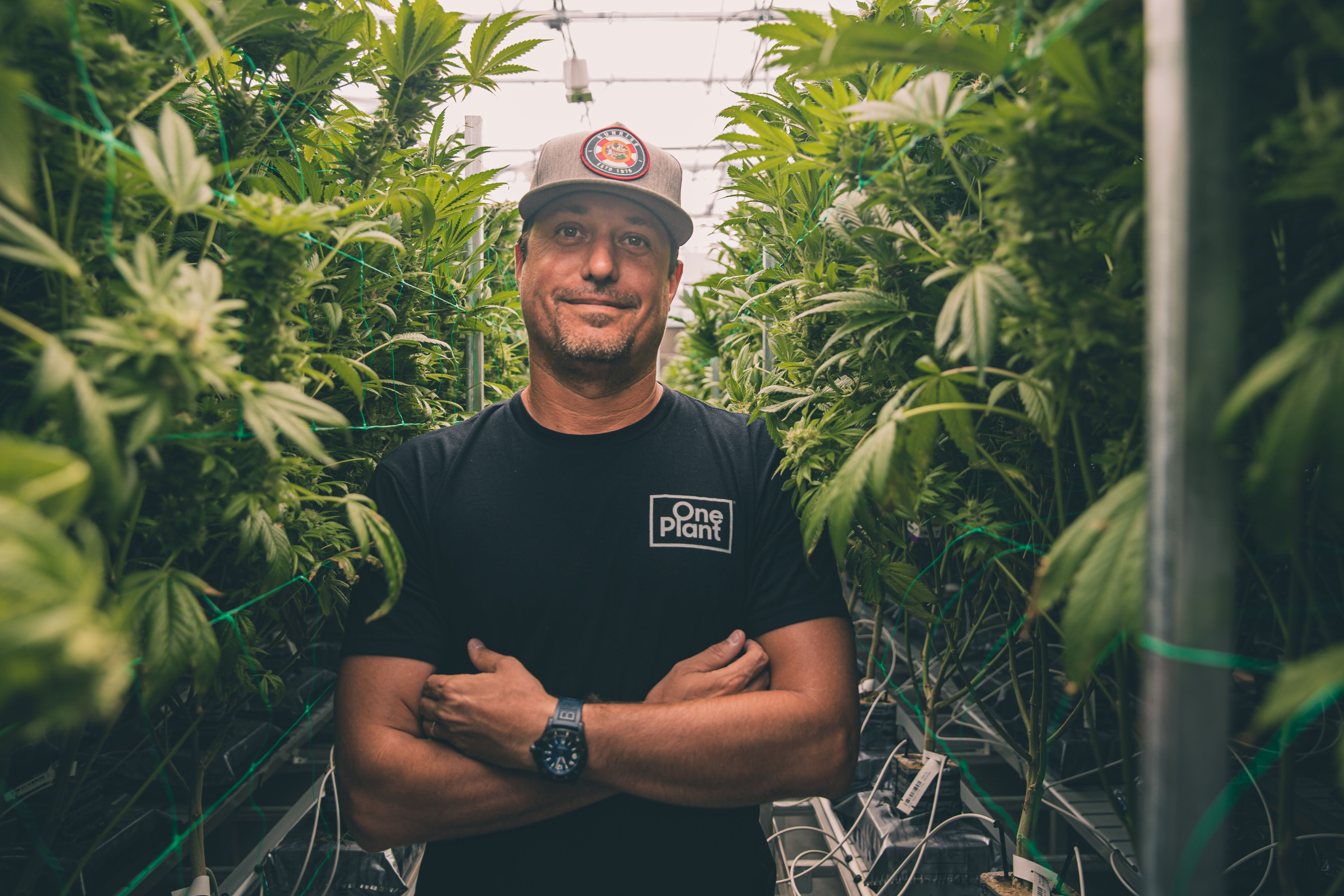 In the Know: Growing number of Cannabis options on Bonita 'Buzz' Road; more JerseyMike's coming 3